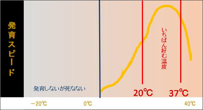 発育スピード 温度