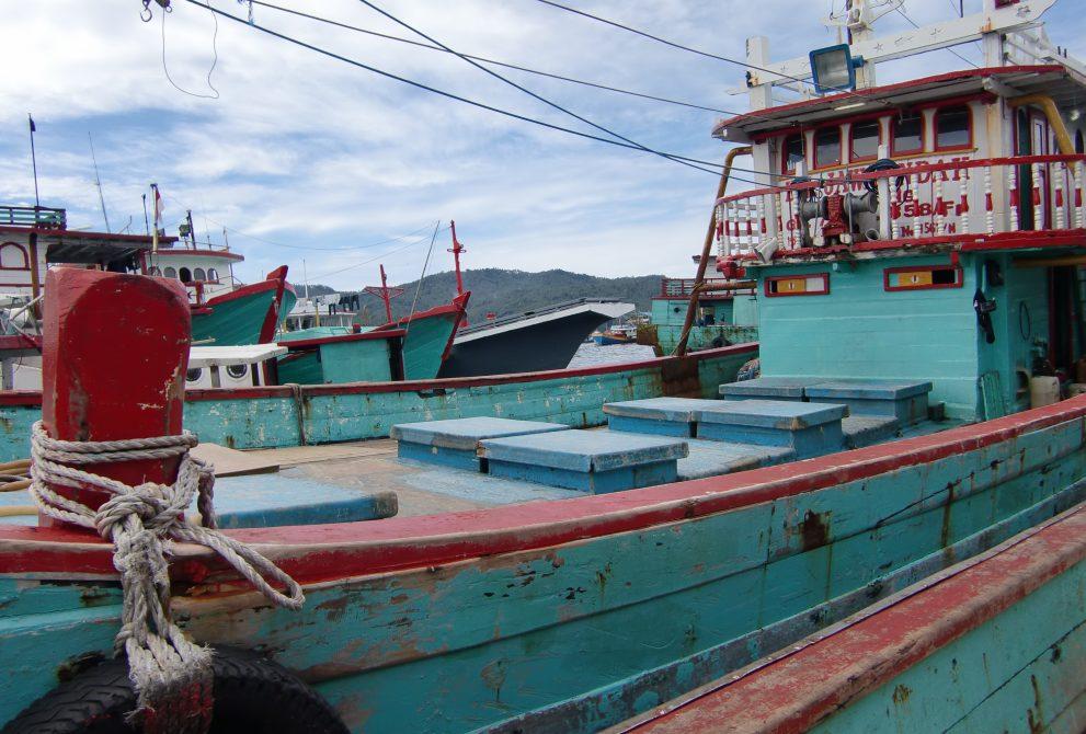 インドネシア 鰹漁船