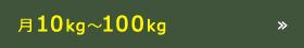 月10kg~100kg